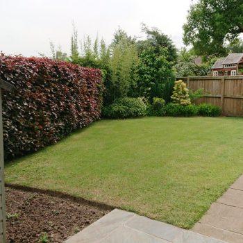 Alderley spacious lawn